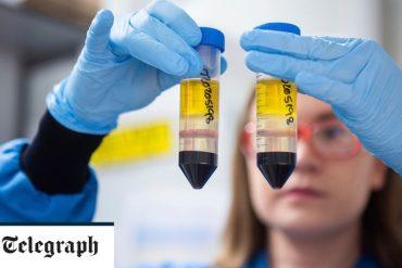 FTSE rises as vaccine confidence markets improve - live updates
