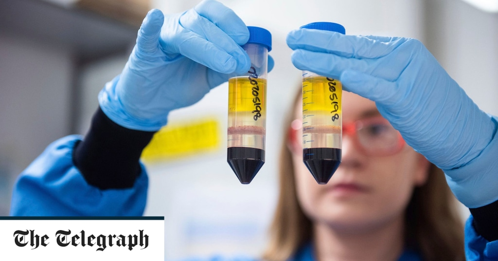 FTSE rises as vaccine confidence markets improve – live updates