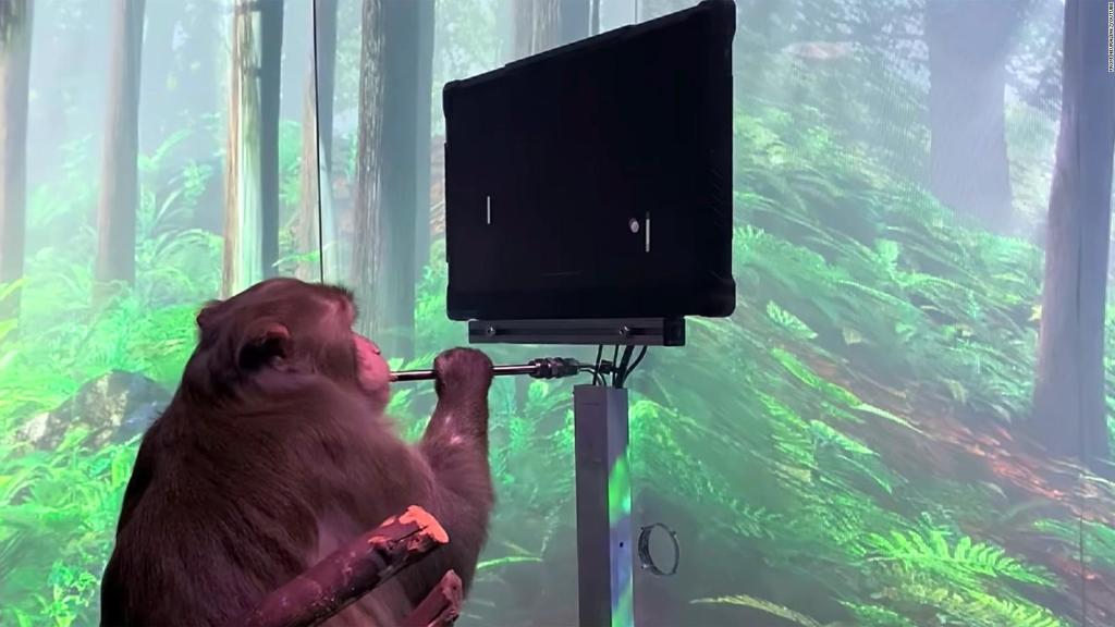 Neuralink claims monkeys can play telepathy