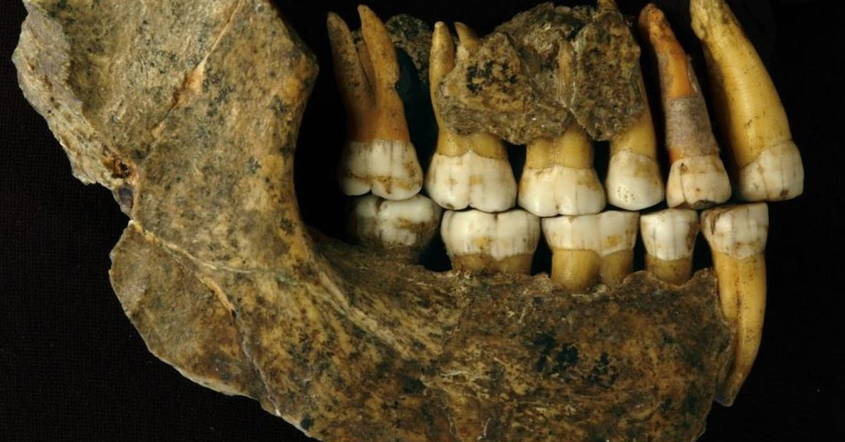 Science – a new perspective on the ancient human genome