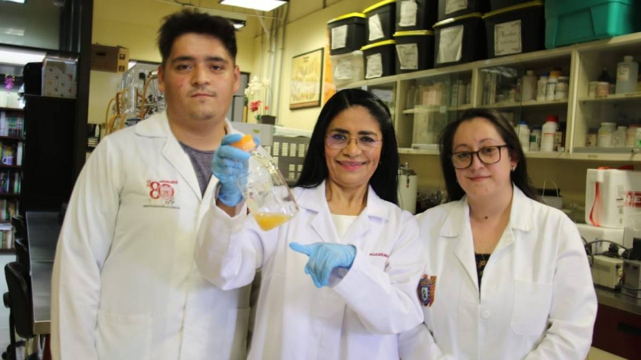 IPN scientists discovered an anti-cancer probiotic from the pulp