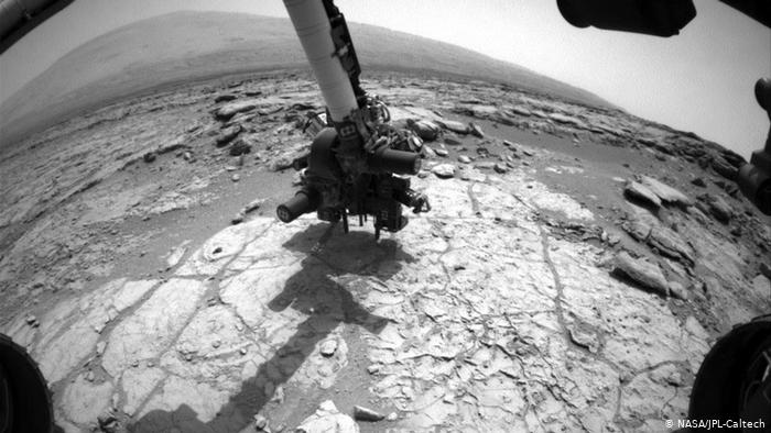 Great Curiosity Arm.