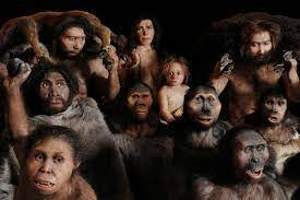 The human family tree is becoming increasingly complex.