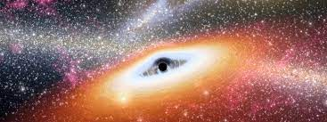 When a city-size star becomes a black hole's lunch, the universe erupts.