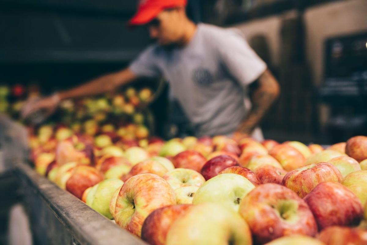 Blake's Orchard & Cider Mill Celebration for 75th Anniversary and Provides Amazing offers 2021