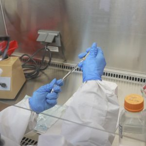 Science in Costa Rica is scanning the coronavirus for mutations and variants