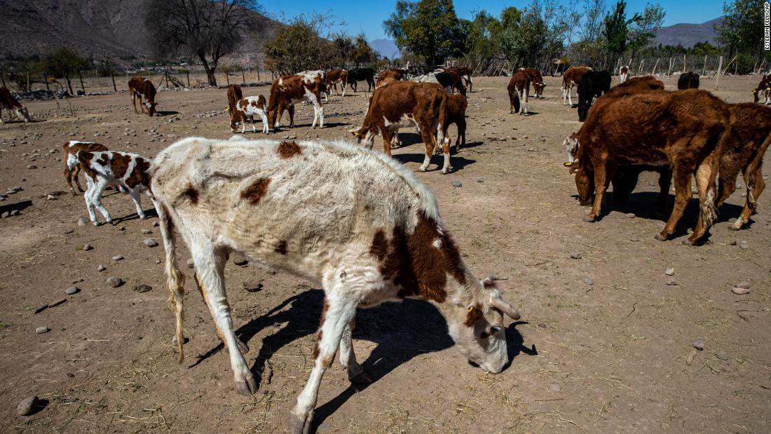 Pacific 'hot spot' causes massive drought in Chile