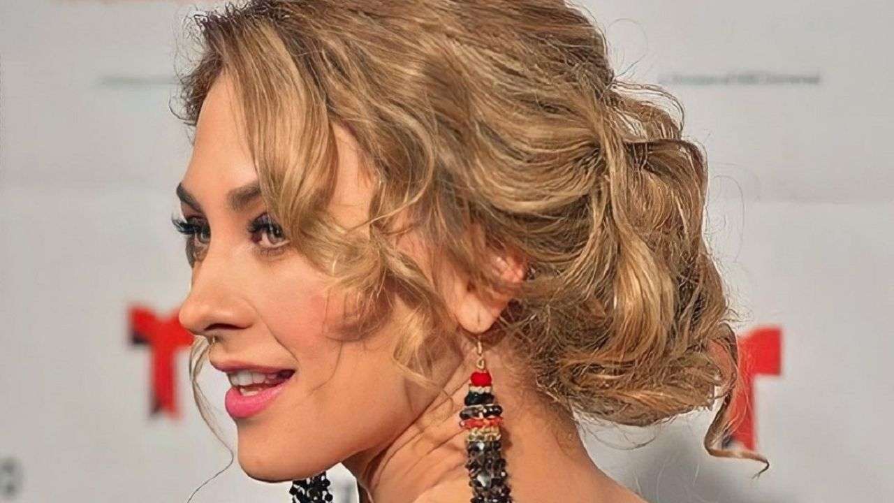 Aracely Arámbula, ex-Luis Miguel, paralyzed networks that show his character