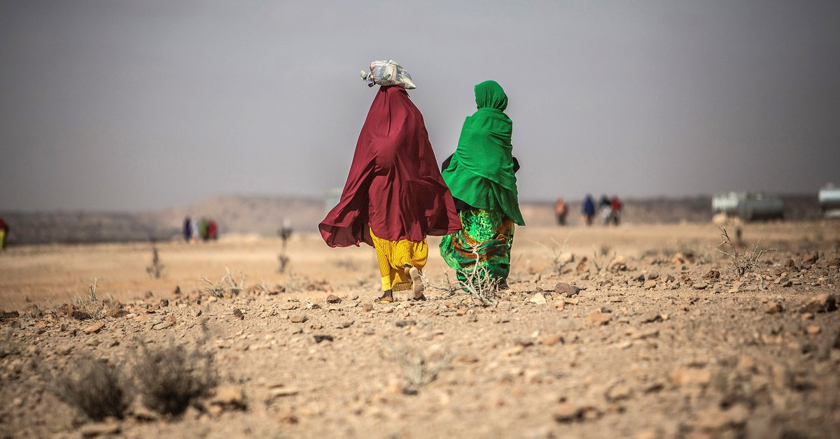 Climate change could force more than 200 million people to leave their homes