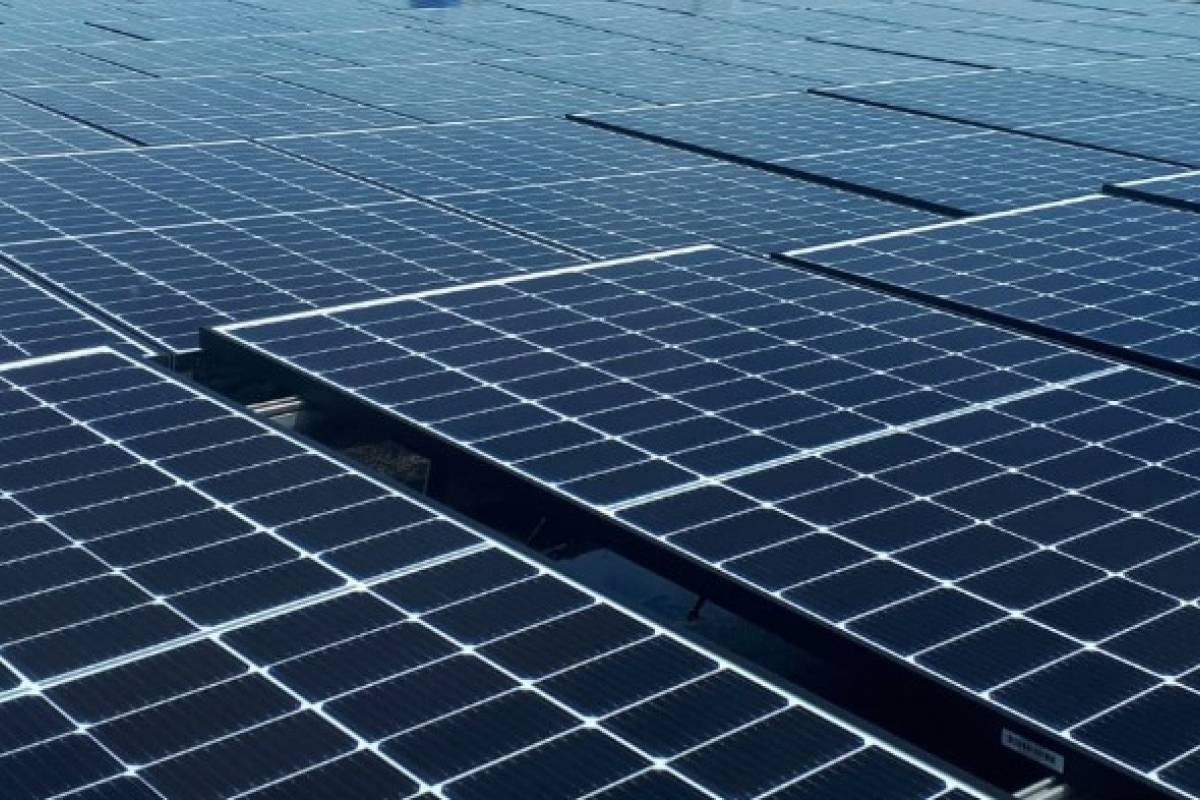 DACO refers Justice and issues a cease and desist order against a renewable energy company