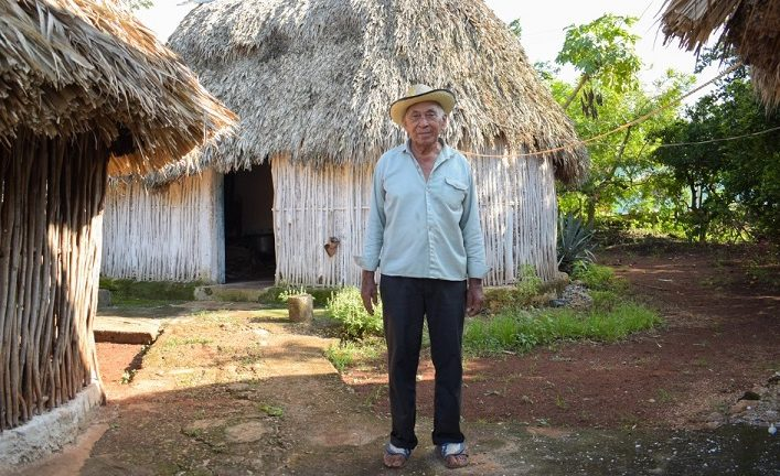 Mayan houses, traditional architecture that harmonizes space and nature